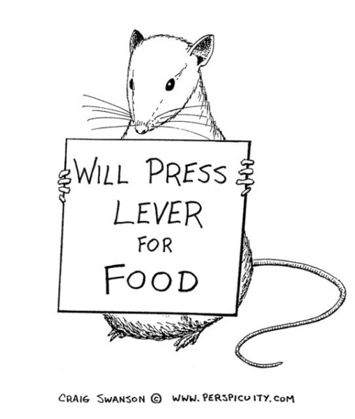 Skinner rat with sign