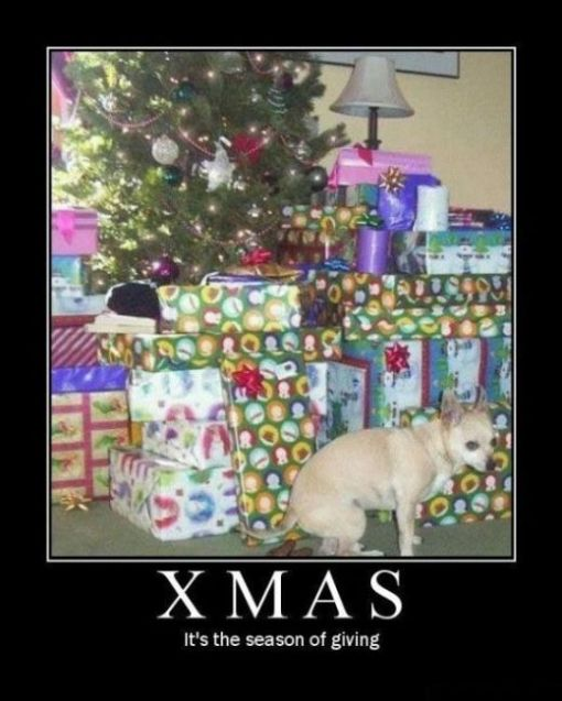 funny_christmas_demotivational_posters_00